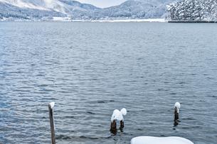 長野県大町市 木崎湖の雪景色の写真素材 [FYI01810040]
