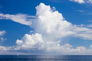 積乱雲と白いヨットの写真素材 [FYI01810108]