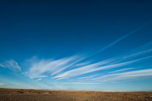 パタゴニアの大草原の写真素材 [FYI01810128]