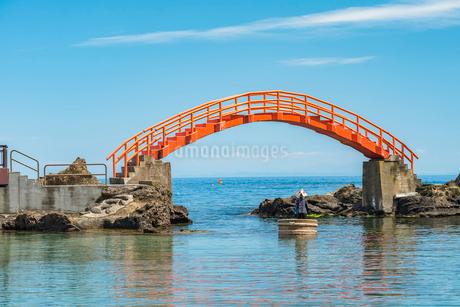 新潟県 佐渡島 小木のたらい舟の写真素材 [FYI01810198]