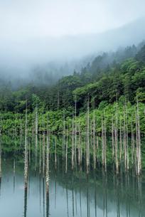 長野県 王滝村 自然湖の写真素材 [FYI01810214]