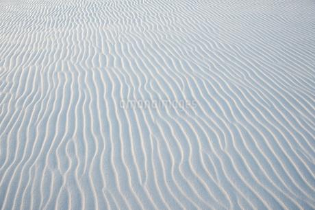 レンソイス砂漠の白砂の風紋の写真素材 [FYI01810242]