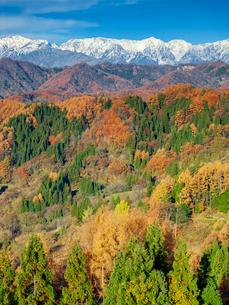 長野県小川村の雪山と三段紅葉の写真素材 [FYI01810254]