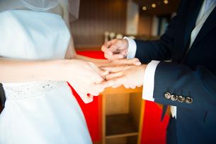 指輪交換を行う新郎新婦の写真素材 [FYI01810305]