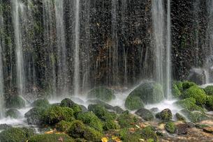 長野県 軽井沢町 白糸の滝の写真素材 [FYI01810343]
