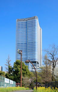 日比谷公園より望む東京ミッドタウン日比谷の写真素材 [FYI01810446]