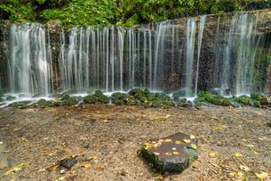 長野県 軽井沢町 白糸の滝の写真素材 [FYI01810470]