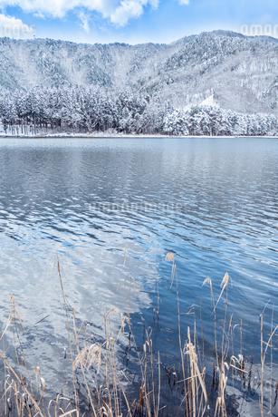 長野県大町市 木崎湖の雪景色の写真素材 [FYI01810523]