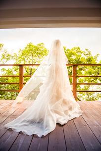 テラスに出るウェディングドレス姿の花嫁の写真素材 [FYI01810573]