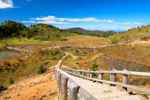 秋の草津白根山の写真素材 [FYI01810578]