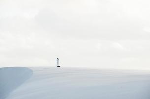 レンソイス砂漠の白砂の砂丘の写真素材 [FYI01810650]
