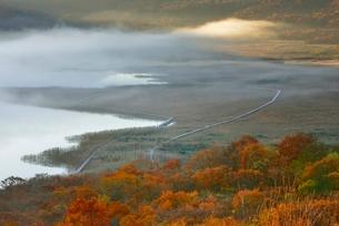 朝霧の高原、秋の雄国沼の写真素材 [FYI01810700]