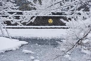 雪の土津神社と葵の御紋の写真素材 [FYI01810763]