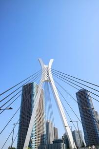 隅田川沿いのビル群の写真素材 [FYI01811071]