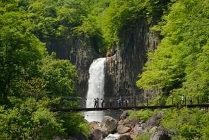 新潟県,妙高,苗名の滝の写真素材 [FYI01811115]