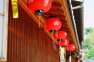 ひがし茶屋街の赤ちょうちんの写真素材 [FYI01811169]