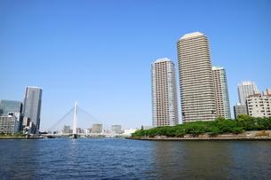 隅田川沿いのビル群の写真素材 [FYI01811260]