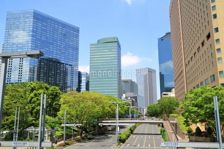新宿中央公園前と緑と道路の写真素材 [FYI01811461]