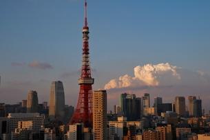 麻布十番からの東京タワーと汐留方面の夕暮れの写真素材 [FYI01811483]