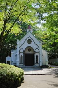 旧軽井沢の教会の写真素材 [FYI01811507]