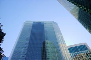 汐留地区の高層オフィス群の写真素材 [FYI01811638]