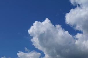 軽井沢の青空と雲の写真素材 [FYI01811667]