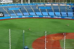 芝生が美しい神宮球場の写真素材 [FYI01811691]