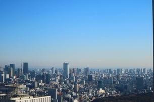 東京都庁から見た東京タワー方面の写真素材 [FYI01811707]