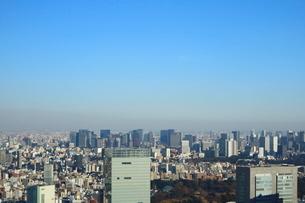 東京都庁から見た大手町方面の写真素材 [FYI01811749]