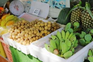 タイ・バンコクのバナナやフルーツの写真素材 [FYI01811782]