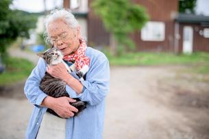 猫を抱くシニア女性の写真素材 [FYI01811817]