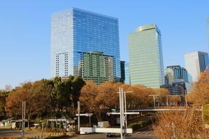都庁前から見た新宿中央公園前交差点方面のビルの写真素材 [FYI01811866]