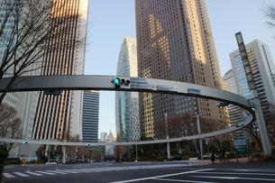 新宿警察署裏の交差点の写真素材 [FYI01811889]