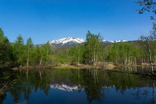 新緑の一ノ瀬園地と乗鞍岳の写真素材 [FYI01811997]