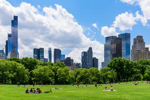 ニューヨーク・セントラルパークのシープメドウの写真素材 [FYI01812540]