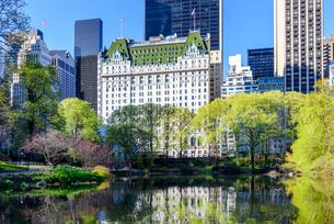 ニューヨーク・セントラルパークとプラザホテルの写真素材 [FYI01812601]