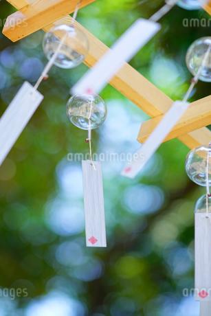 川越 氷川神社の風鈴の写真素材 [FYI01812979]