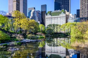 ニューヨーク・セントラルパークとプラザホテルの写真素材 [FYI01813122]