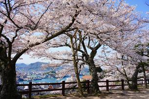 千光寺公園の桜と瀬戸内の風景の写真素材 [FYI01813174]