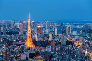 東京タワーと東京都心の夜景の写真素材 [FYI01813228]