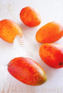 沖縄のマンゴーの写真素材 [FYI01813242]