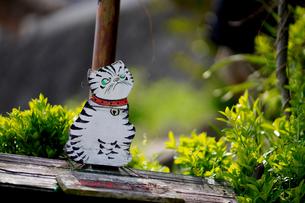 尾道猫の細道の飾り物の写真素材 [FYI01813249]
