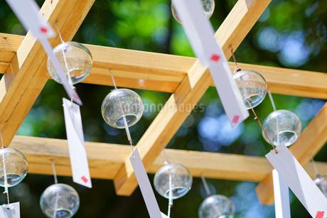 川越 氷川神社の風鈴の写真素材 [FYI01813326]