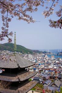 天寧寺と桜と尾道水道と尾道大橋の写真素材 [FYI01813353]