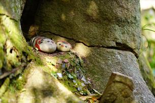 尾道の福石猫の写真素材 [FYI01813364]