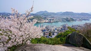 満開の桜と尾道の風景の写真素材 [FYI01813375]
