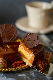 チョコレートケーキの写真素材 [FYI01813388]