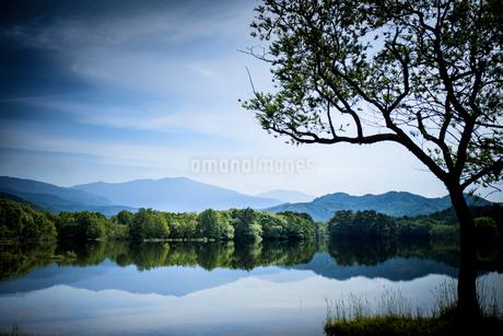 初夏の小野川湖の写真素材 [FYI01813450]