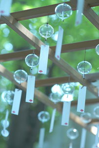 川越 氷川神社の風鈴の写真素材 [FYI01813473]