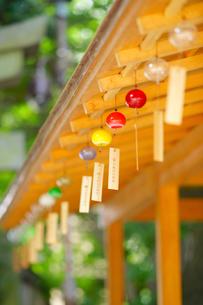 川越 氷川神社の風鈴の写真素材 [FYI01813521]